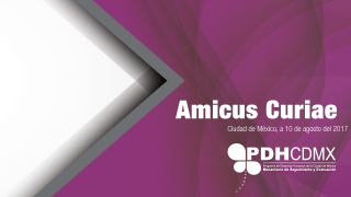 AMICUS.png